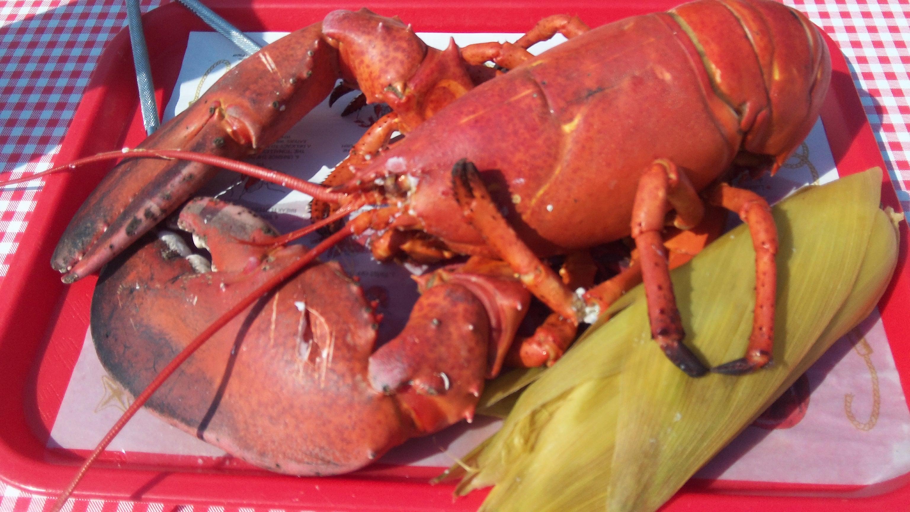 trenton's best lobster pound